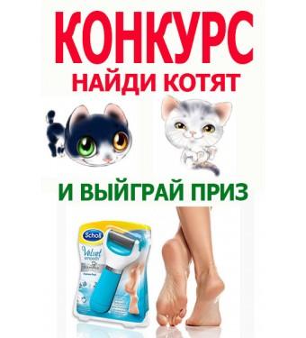 Конкурс 32 найди всех котиков и получи приз